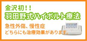 羽田野式ハイボルト療法